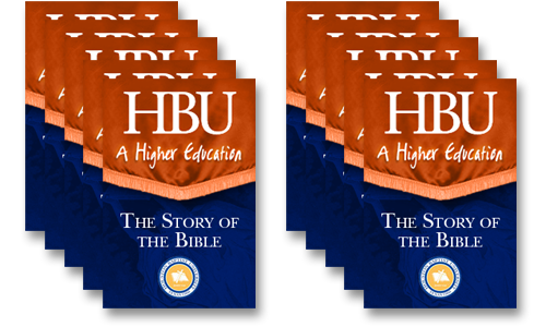 Story of the Bible - 10 Licenses