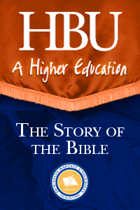 Story of the Bible - 1 License