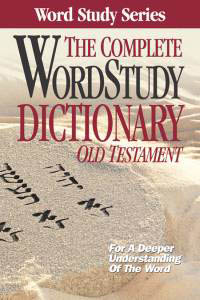 The niv study bible complete library