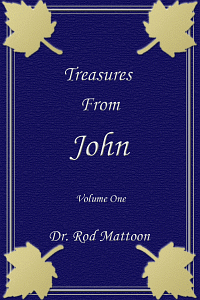 Treasjohn