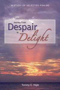 Despairtodelight