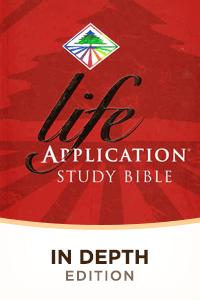 Life application in depth