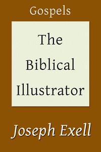 Biblicalillustgospels