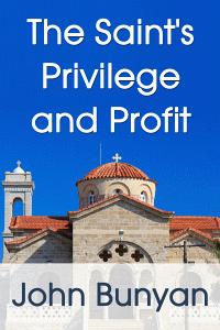 Privilegeprofit