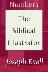 Biblicalillustnumbers