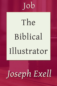 Biblicalillustjob