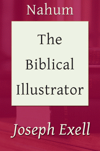 Biblicalillustnahum