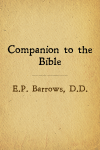 Companion bible cover