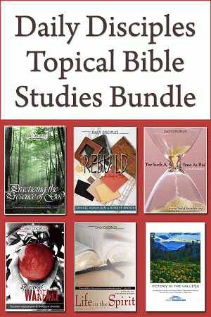 Dailydisctopbundle
