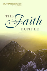 Faith bundle