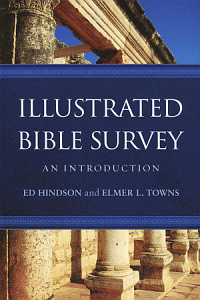 Illustratedbibsurvey