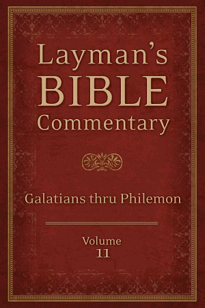 Laymanbibcommvol11