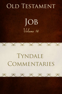 Tyndalecommjob