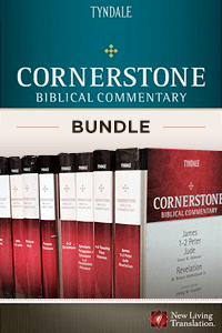 Cornerstone bundle