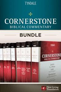 Cornerstone bundle