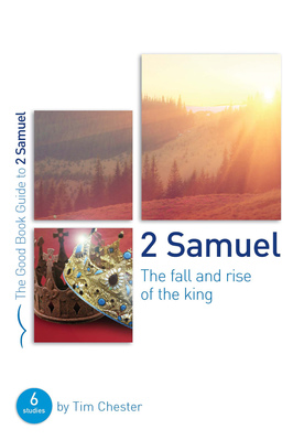 2 samuel %28the fall and rise of the king%29